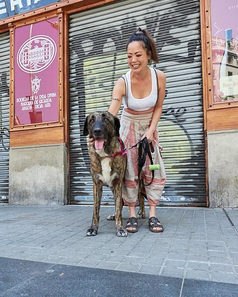 Evento para perros en Barcelona