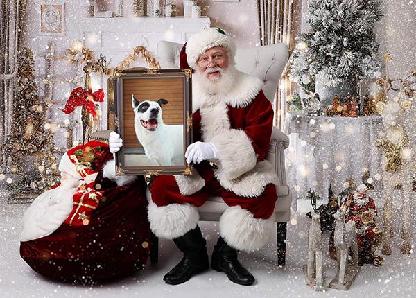 postal digital de papa noel con un perro