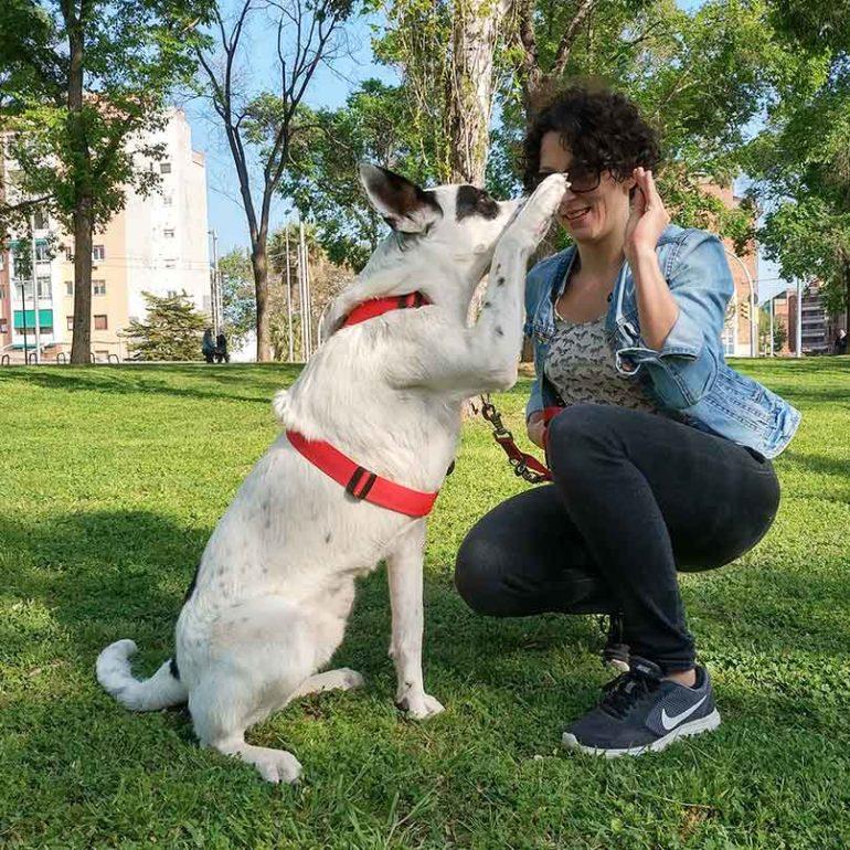Zuzanna Rudas, fotógrafa de perros en Barcelona