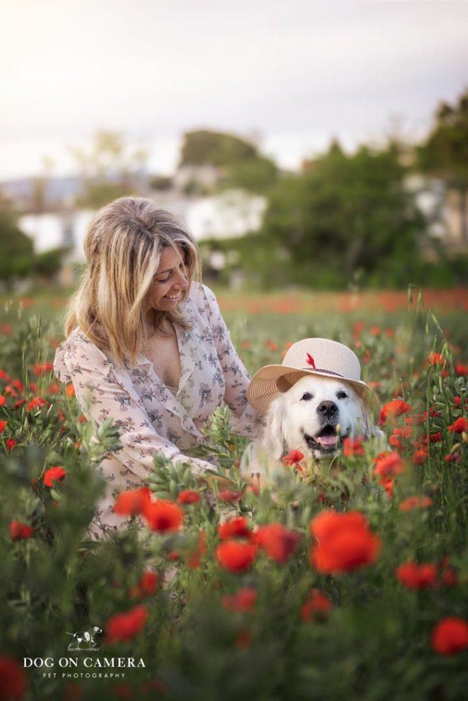 Una mujer y su perro golden retriever de excursión en Cataluña en el campo de amapolas